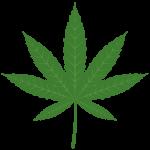 大麻解禁について考えた